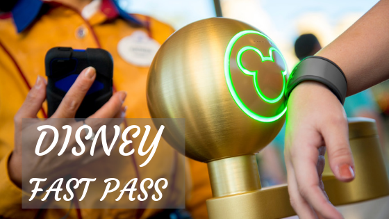 DISNEY FAST PASS - Disney Fast Pass - Guia Completo